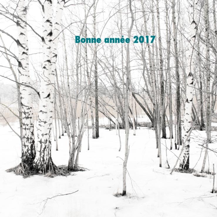 À Points Reliés, bonne année, 2017, vœux, atelier, création, made in france